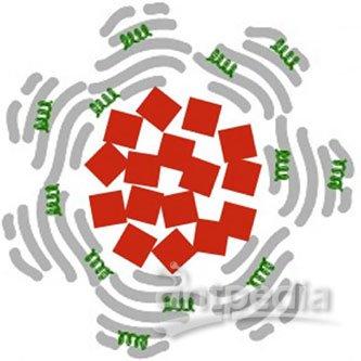 磁性纳米粒子可显著加速血栓溶解
