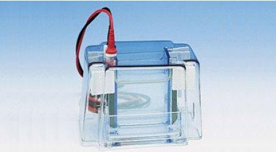 微型双面垂直电泳槽
