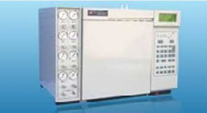 GC-2010(TCD)天然气(液化气)分析专用气相色谱仪