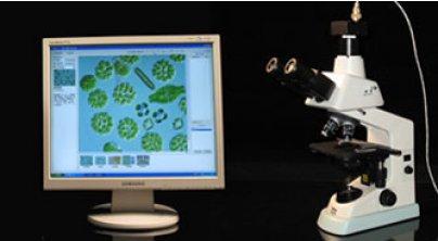 迅数Algacount S20藻类辅助鉴定计数仪