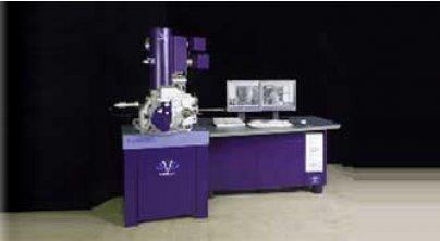 Apollo 300 扫描电镜