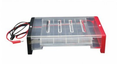 RDY-SP8型琼脂糖水平电泳仪