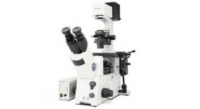 奥林巴斯IX71,IX81显微镜