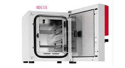 BD115恒温培养箱